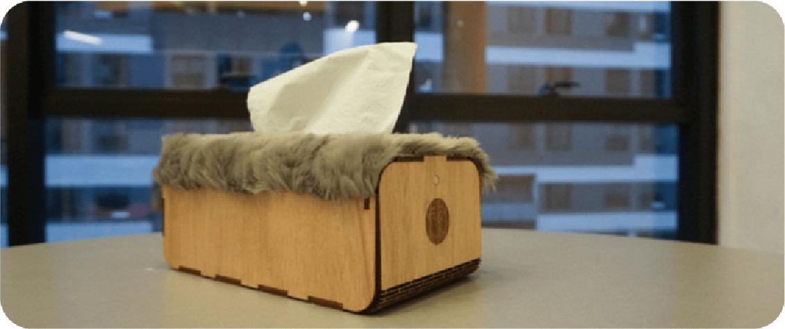 cicada tissue box
